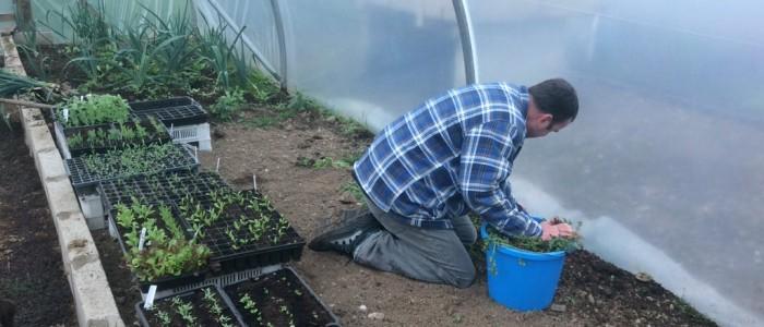 horticulture_gardens_10